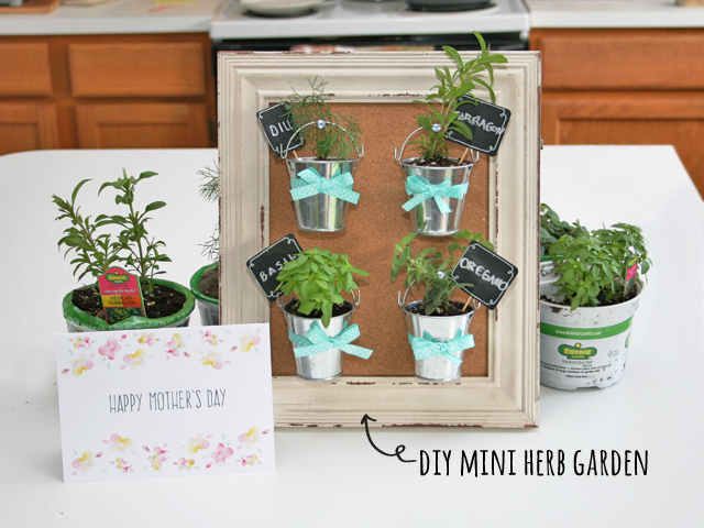 Mother 39 S Day Diy Mini Herb Garden