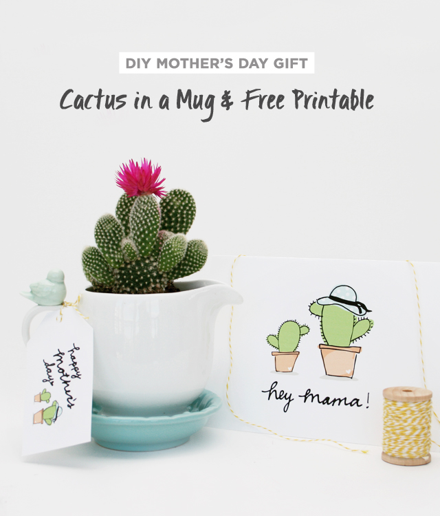 cactus single parents Study flashcards on bio at cramcom the creation of offspring carrying genetic information from just a single parent is christmas cactus is a short-day.