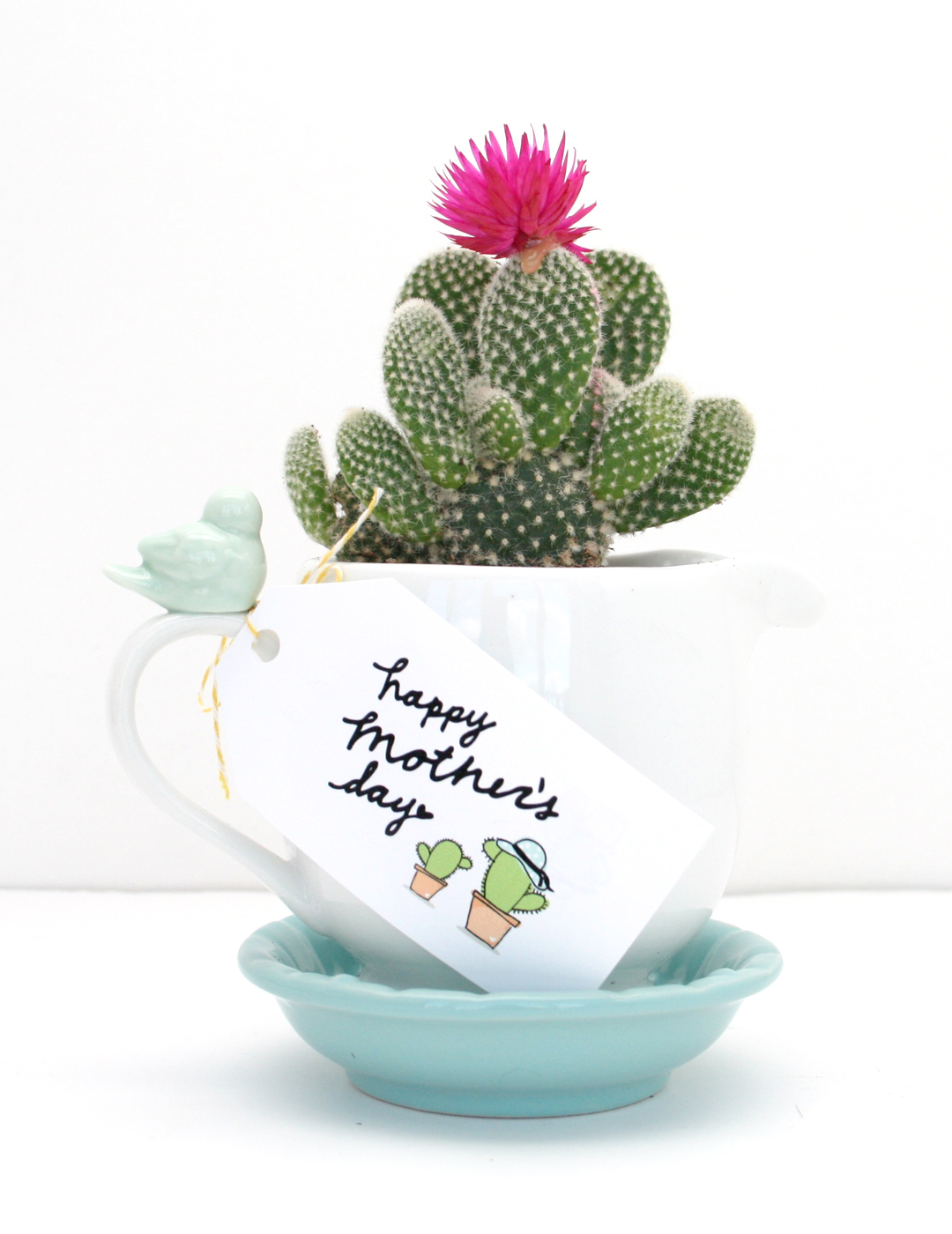 Happy Mothers Day Gift: Cactus in a Mug and Free Printable