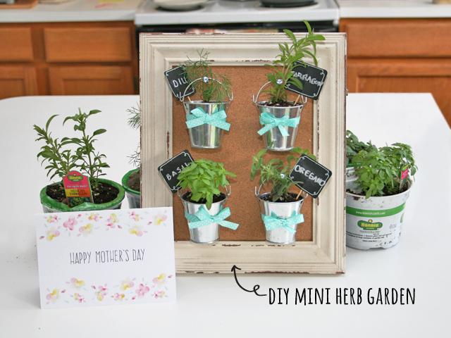 Mother S Day Diy Mini Herb Garden